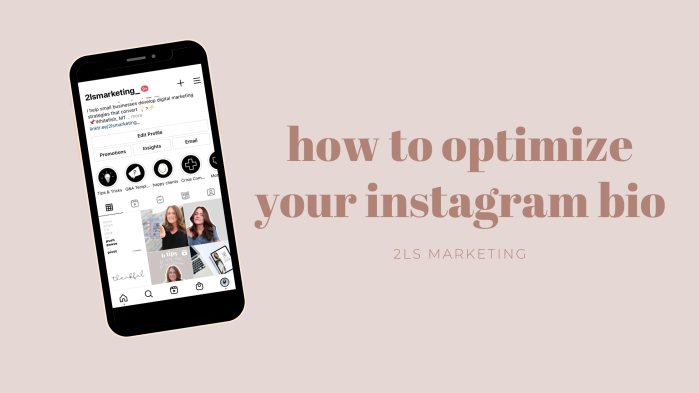 how to optimize your ig bio